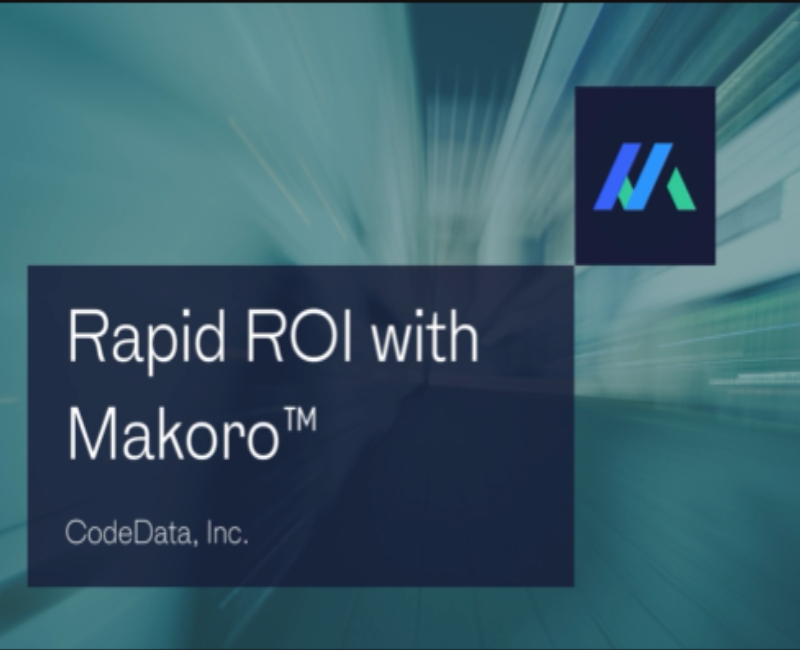 Makoro™ AI delivers rapid time to value to asset owners and operators